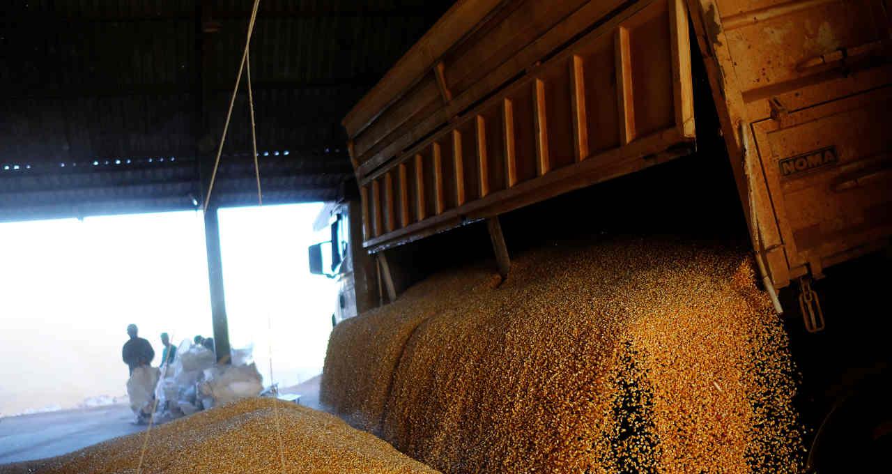 Soja Safras Grãos Commodities Logística Agronegócio