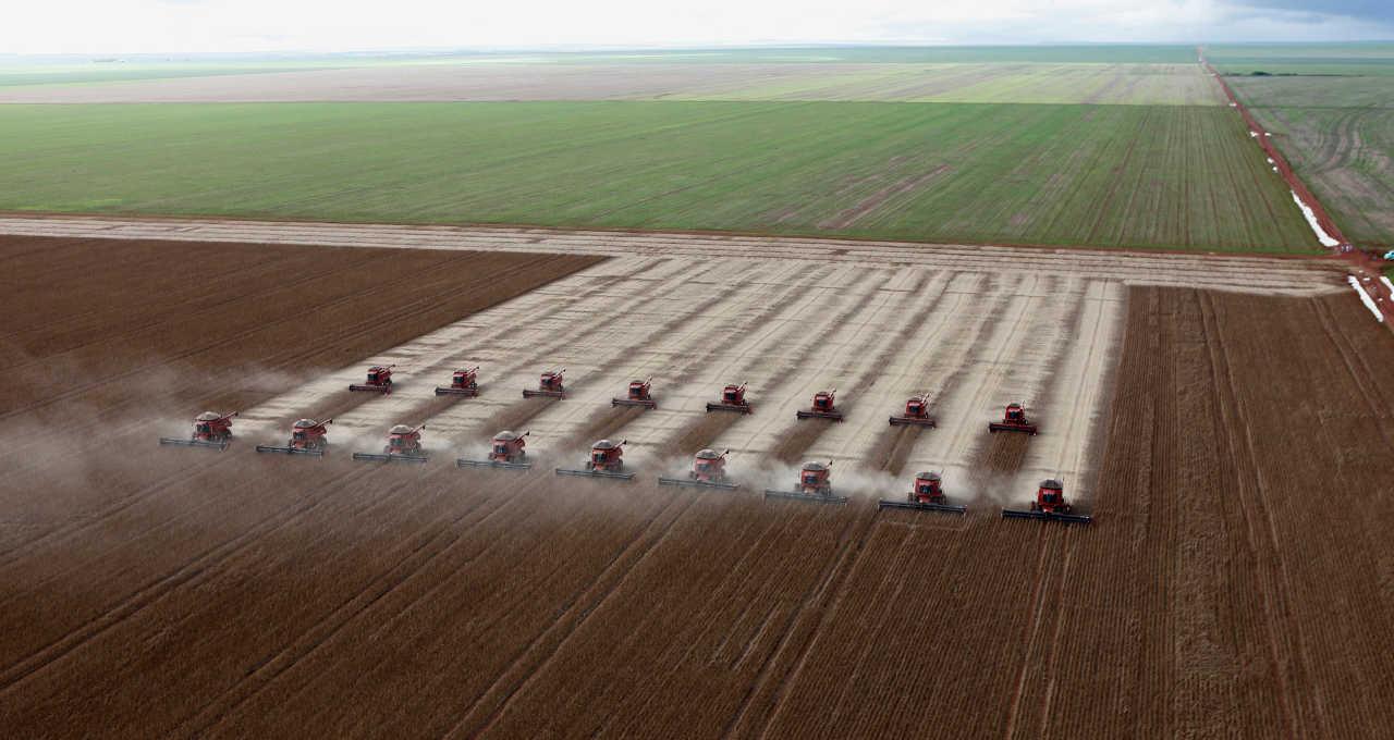 Safras Agricultura Agronegócio