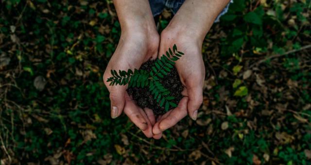 Sustentabilidade Meio Ambiente ESG