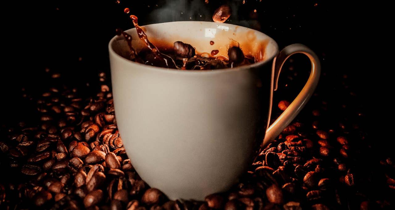 Café Bebidas Grãos Agronegócio