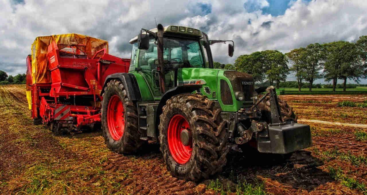 Maqiuina agricultura