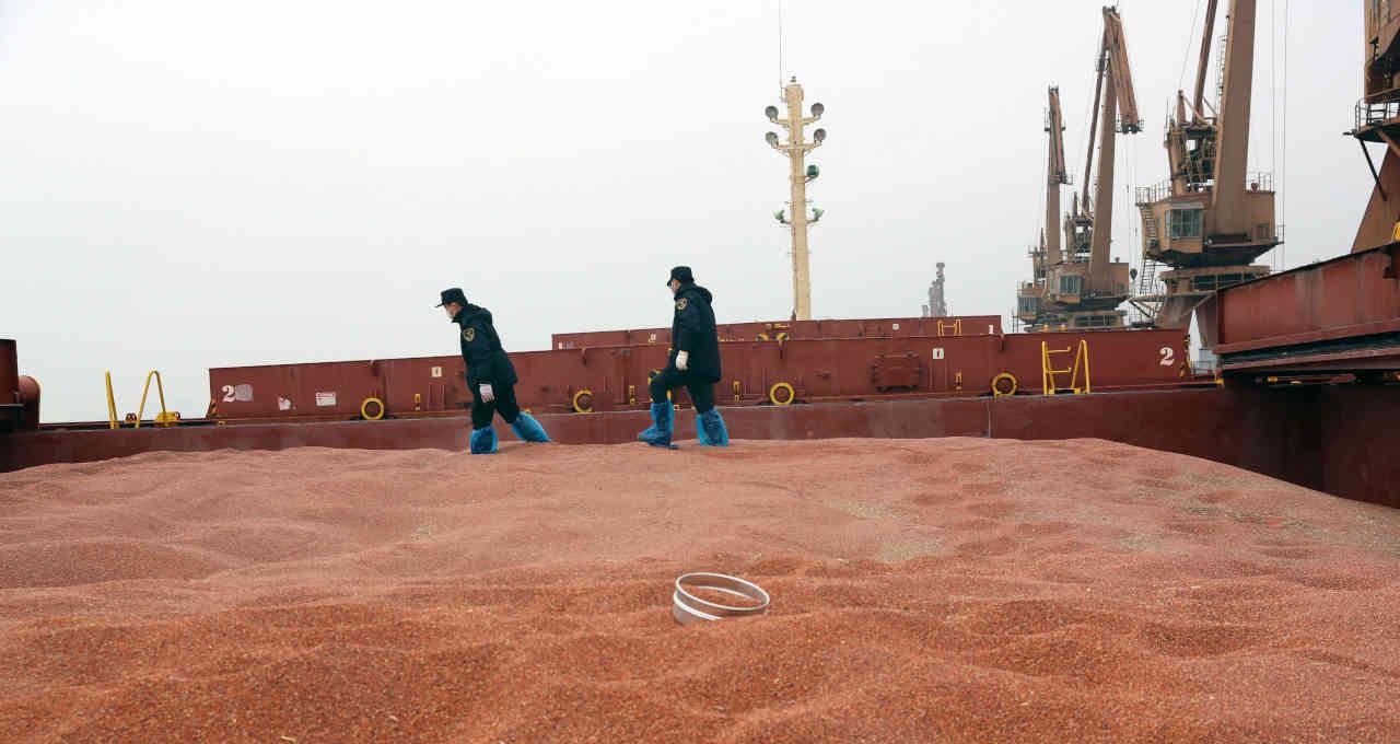 Carregamento de sorgo chega a porto na China 11/02/2020