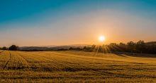 Terreno, área, agronegócio