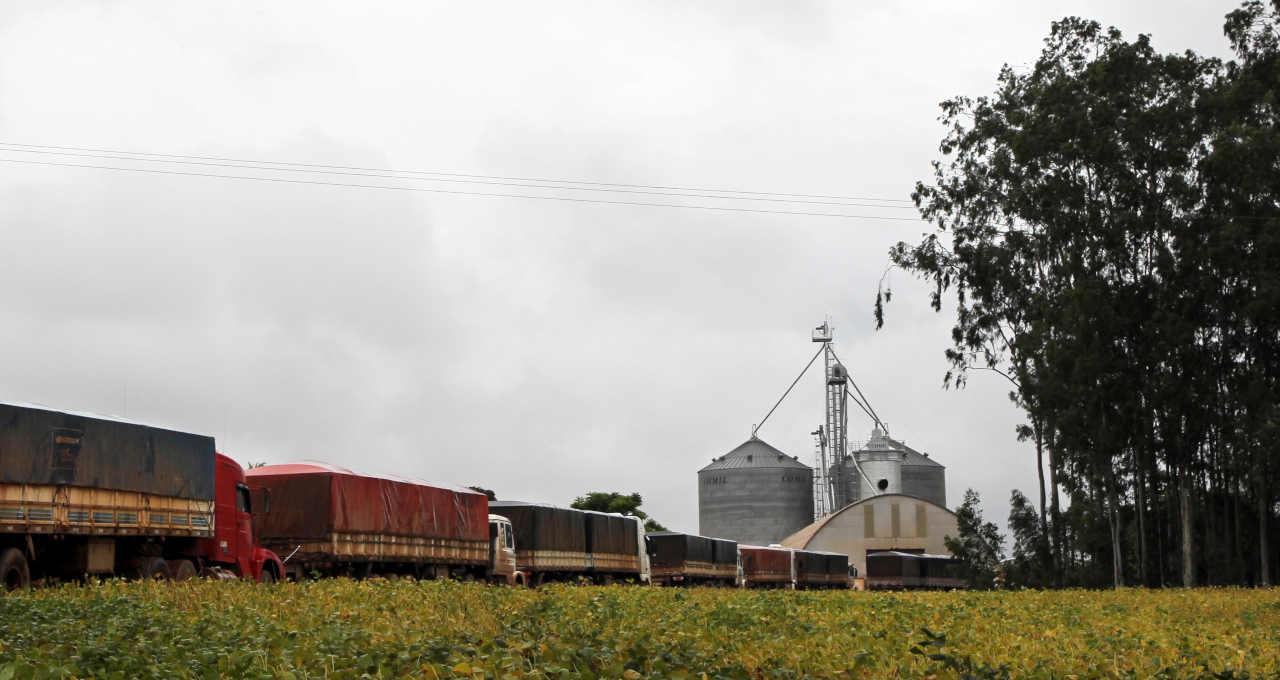 Grãos Commodities Caminhões Logística Agronegócio