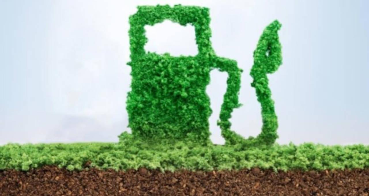 Biogás Biometano Biocombustível