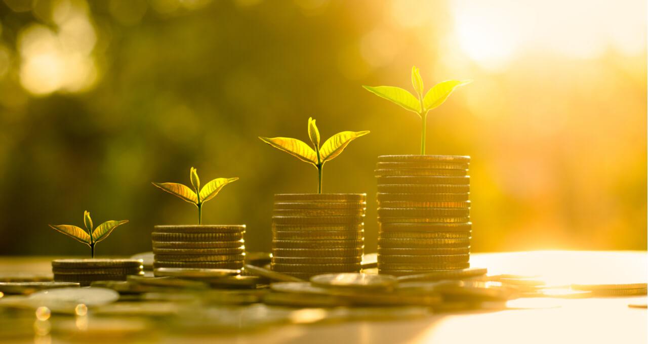 Pilhas de moedas crescendo, uma plantinha em cima de cada uma