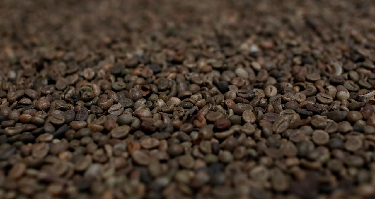 Café, Grãos, Alimentos, Agricultura
